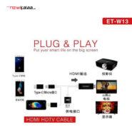 HDMI Earldom w13